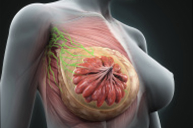 Tcnicas de biopsia para el diagnstico de lesiones